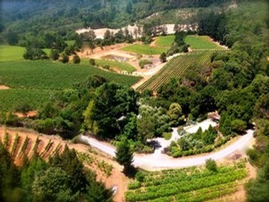 Aerial view of our Bradford Mountain Estate Vineyard on the western edge of Dry Creek Valley